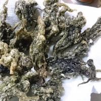 岩海苔の天ぷら