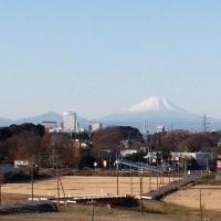 今朝の富士山です!