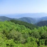 和泉葛城山の頂上で・・・・