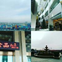 #161209 最高気温二度の青島から無事帰還