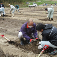 奥松島地域で果樹産地づくりに取り組んでいます