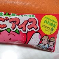 鳥取県産紅ほっぺ使用 いちごアイス