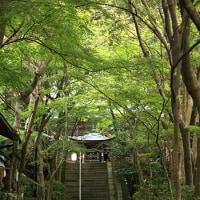 神峯山寺と森のコンサート