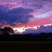 鹿沼市 夕景 以前の画像