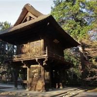 「今日の日記、平林寺の紅葉の写真を撮りに行きました」