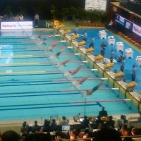 日米のボスの疑惑追及は?/ジャパンオープン水上選手権を観戦