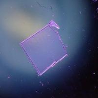 表面照射光源テスト RGB LED