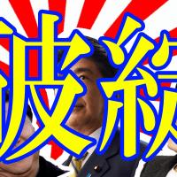 【右・左で分けるな愛国心です】「青山繁晴、桜井誠、鈴木信行…日本の極右が次々と政界進出宣言している…」韓国メディア