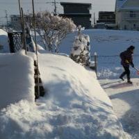 週末は吹雪(It is a snowstorm on the weekend)