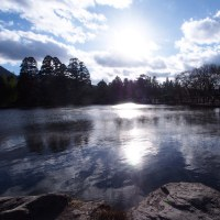 金鱗湖その輝き