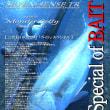 MONSTER JETTY<Breakwater DAY Special>MJB-1002-TR
