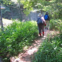2 牛田山(261m:東区)~二葉山縦走登山  「神田山」から牛田山へ