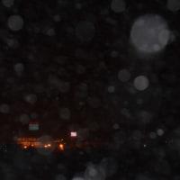 1/14 いよいよ雪が降り始めました
