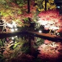 曽木公園『逆さもみじ』