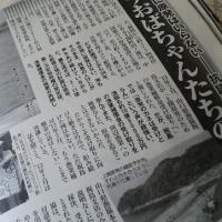 10/11発売『週刊女性』の原発特集に/カープ坊やな八天堂パン