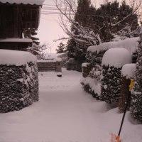 雪の京都 女子駅伝