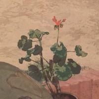 ミュシャの花