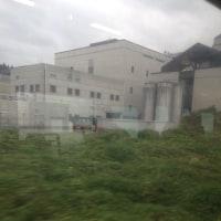 ★信越本線 来迎寺〜越後岩塚間の車窓から