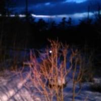#045 -'17.    2月19日日曜日のお山の日記 (目か覚めて&恐る恐る温度計確認)