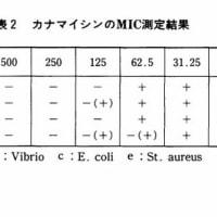 ニンニクの殺菌作用