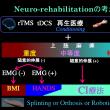 脳障害による麻痺側上肢のニューロリハビリテーションの考え方
