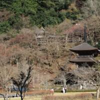 西国第二十九番札所 松尾寺3