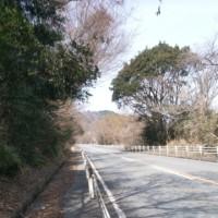 【初心者ロードバイカーの奮闘記】湯の山温泉駅と鈴鹿スカイラインに行ってきた