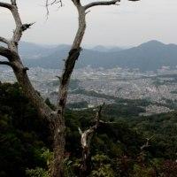裏山の里山を歩く~二ヶ城山