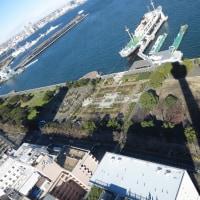 アラフォー会 横浜港散策と忘年会