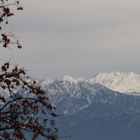 今日の立山連峰