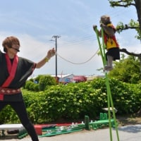 開成町でお猿の大道芸