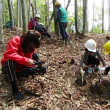 平成29年度北高上緑地タケノコ掘り体験会
