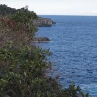 つなきり岬から門脇灯台