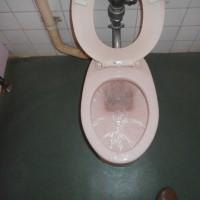 トイレの詰まり・・・千葉市