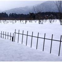 雪には杭が良く似合う