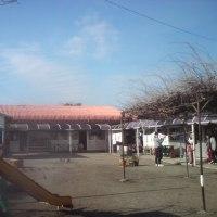 くりのみ学園