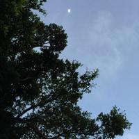 7/12 の風景