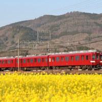 菜の花と鮮魚列車