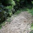 日本国憲法?・神社の杜・天狗高原・旅の思い出(アビスコ国立公園)