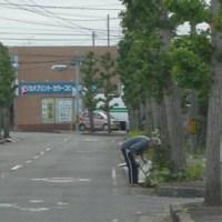 おはようございます!町内一斉道路清掃!