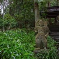 栃木  2017年6月11日 茅葺き屋根の禅寺ではげむ 初夏の瞑想会