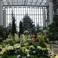 結婚式 奇跡の星の植物園