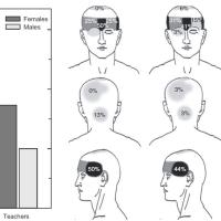 アイスクリーム頭痛研究の最前線 ―その遺伝と誘発法,そしてねこ―