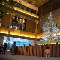 名駅 クリスマスツリー巡り