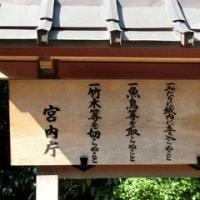 京都を築いた天皇・・【桓武天皇陵】が桃山御陵内にあった!