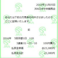5回京都11R三連複