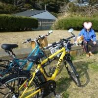 ジャッキーをクロスバイク(電動自転車)に乗せてポタリング(動画付き)