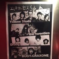 Yellow Studs@kyoto mojo