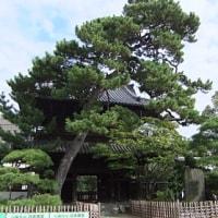 初・泉岳寺