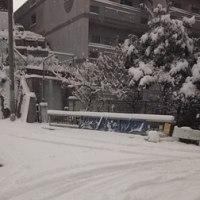 雪だるま作りたい❗(笑)